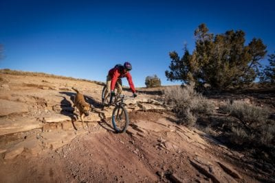 A man and his dog rolling a ledge on the Horsethief Bench trail near Fruita, Colorado.